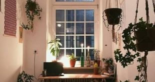 Kleines, aber gemütliches WG-Zimmer mit vielen grünen Pflanzen. #plants #wgzim...